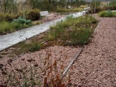 Rails incrustés dans le sol